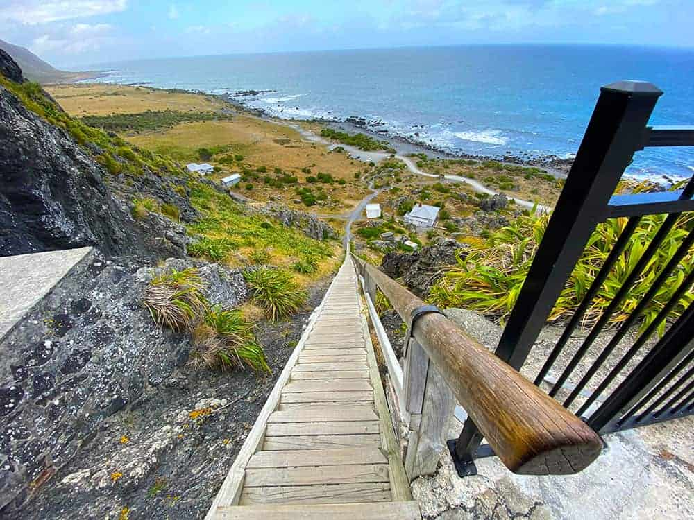 Top of Cape Palliser steps