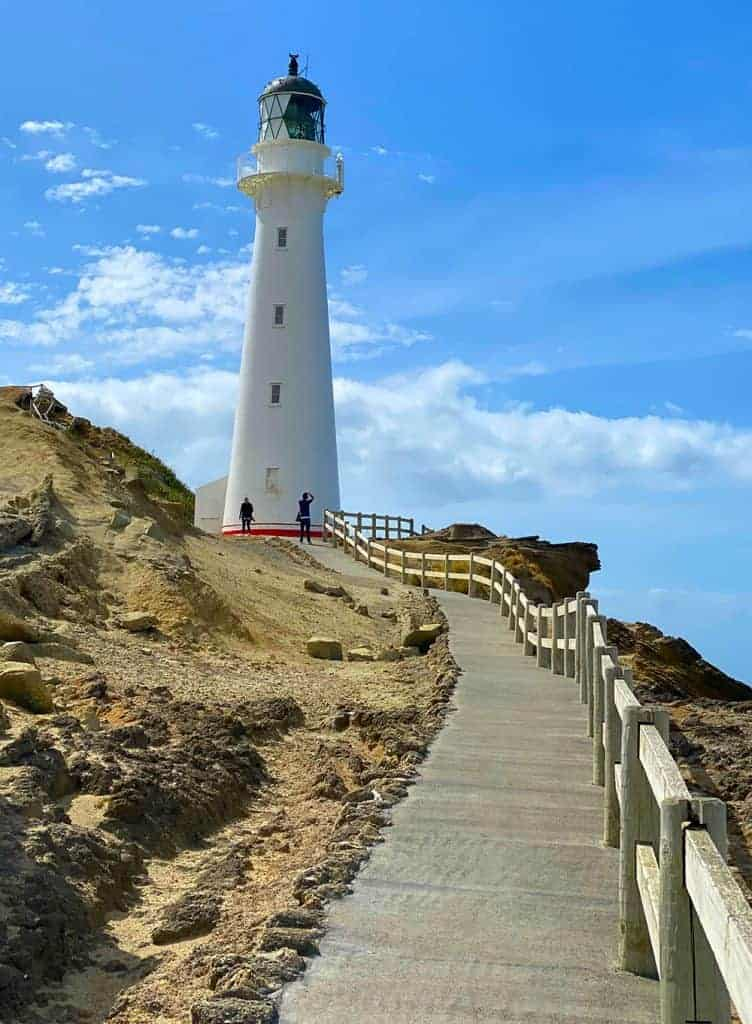 stroll to the Castlepoint Lighthouse