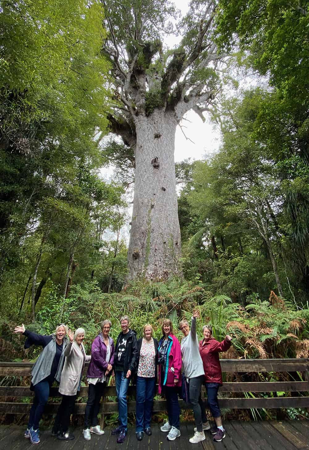 Tour group in front of Tane Mahuta