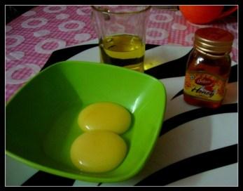 homemade honey conditioner