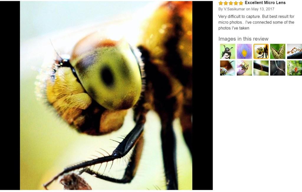 Best budget macro lens for Nikon DSLR Camera.