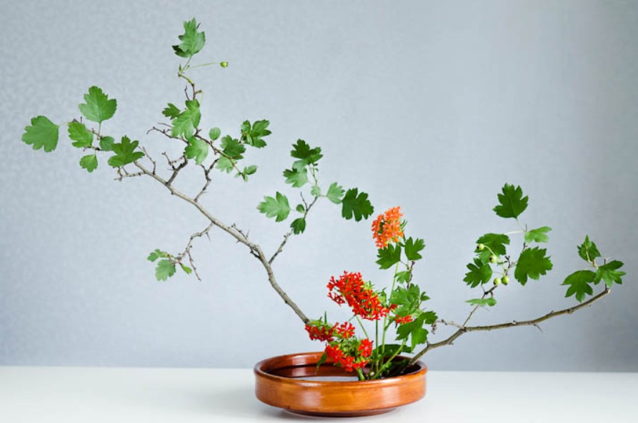 Slanting style Moribana - Ikebana art of flower arrangement