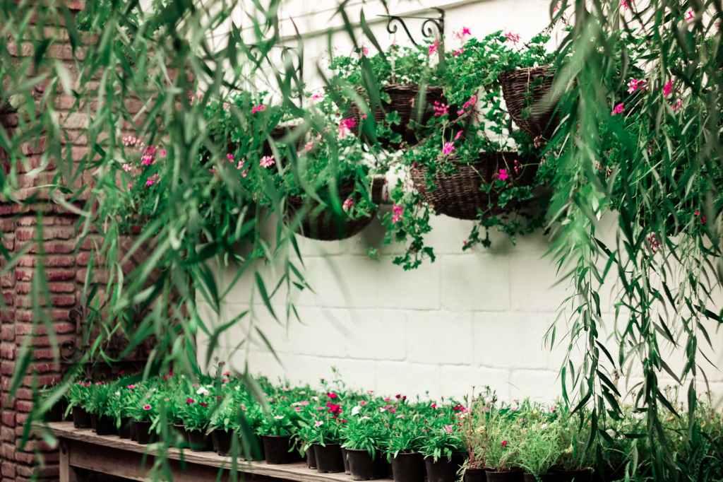 Ikebana - Moribana - Hanging style - Container photography flower arrangement