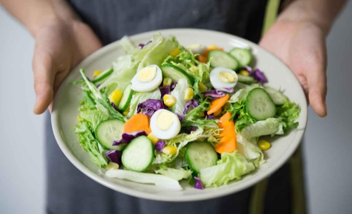 Vegetarian food benefits
