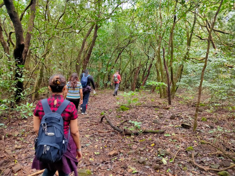 Andharban Dense forest trek photos