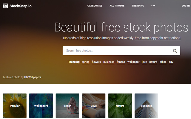 Stock Snap Free Images