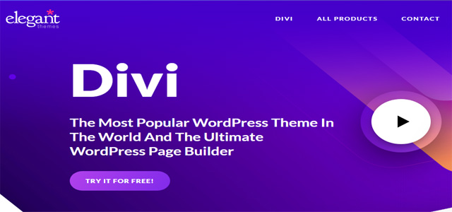 Divi WordPress Themes