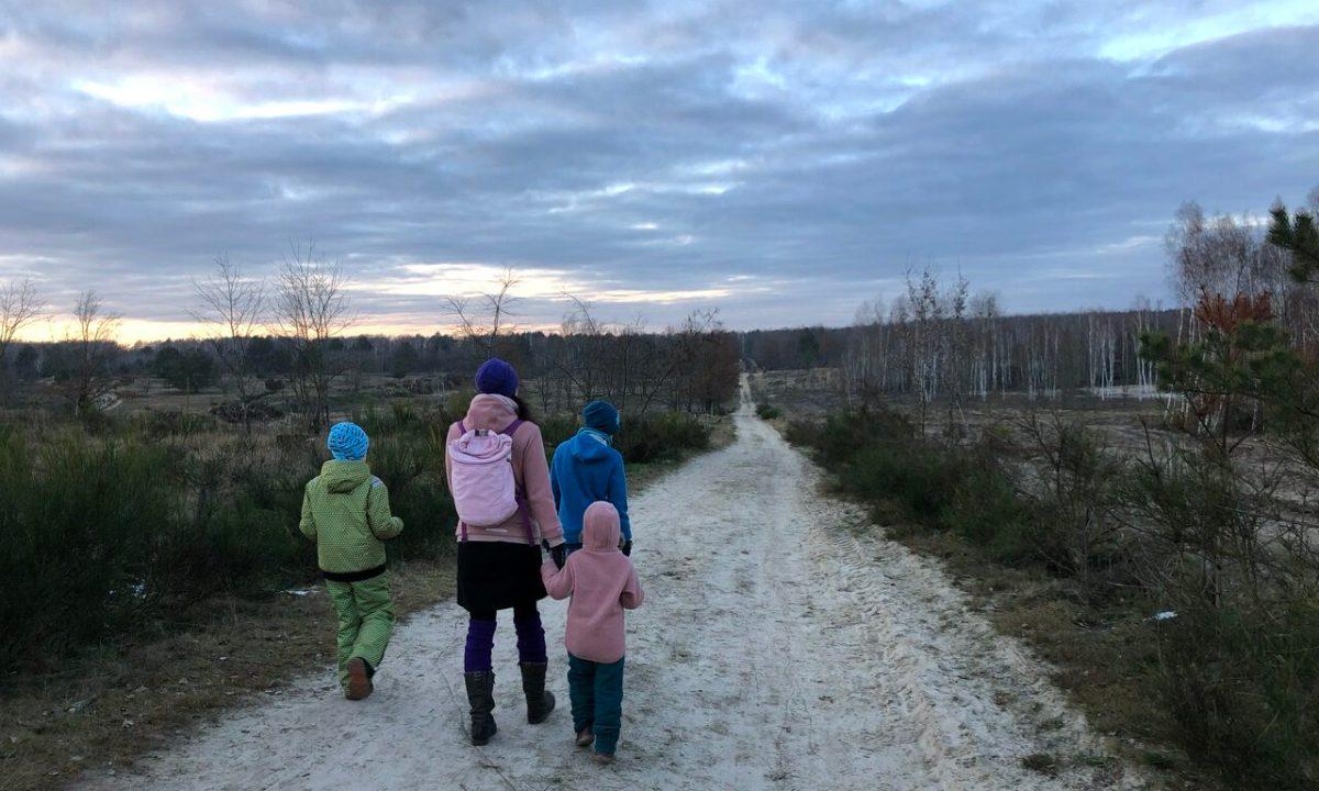 Eiskalt im Wald, Holzspielzeug und gefrorene Pfützen ganz ohne Schnee, unser #WiB 16. & 17. Januar