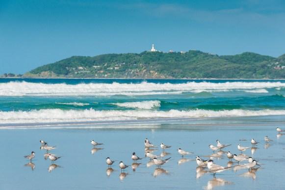 Beachfront, Elements of Byron