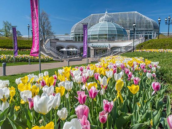 10 Exciting Activities To Do While In Pittsburgh