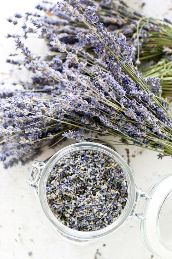 The Essential Essential Oils Guide for Your Home