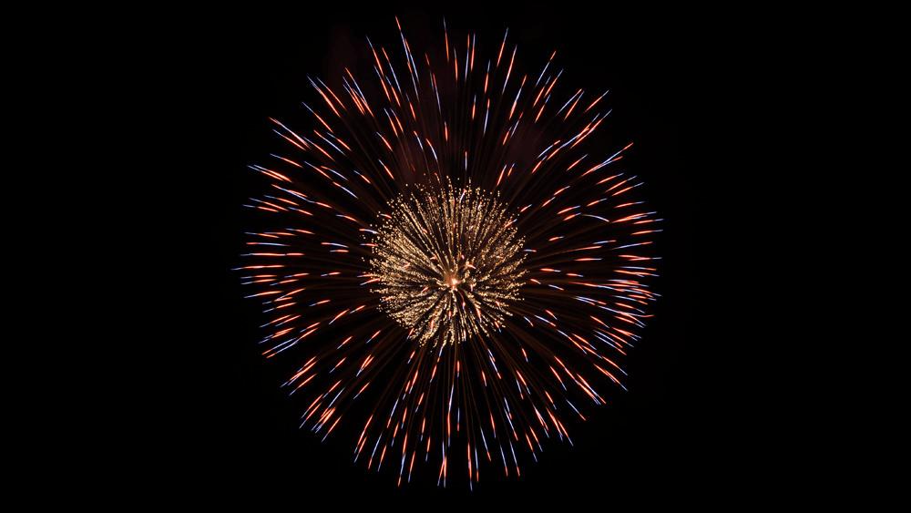 Pistil Firework