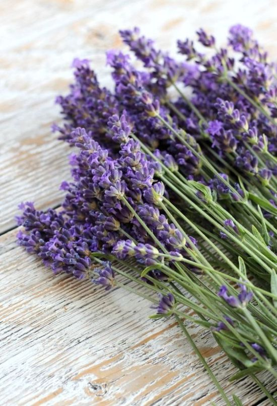 10 Essential Oils That Are Must-Haves