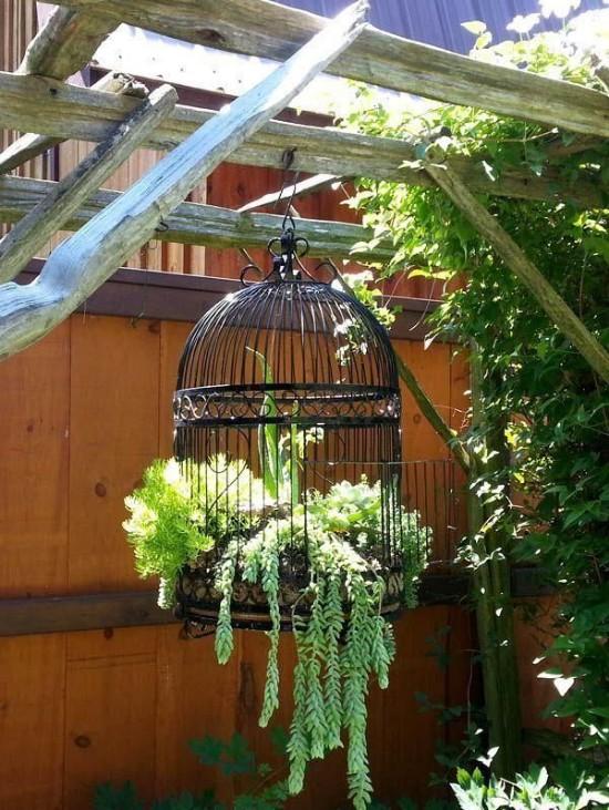 10 Small gardening ideas to brighten your yard