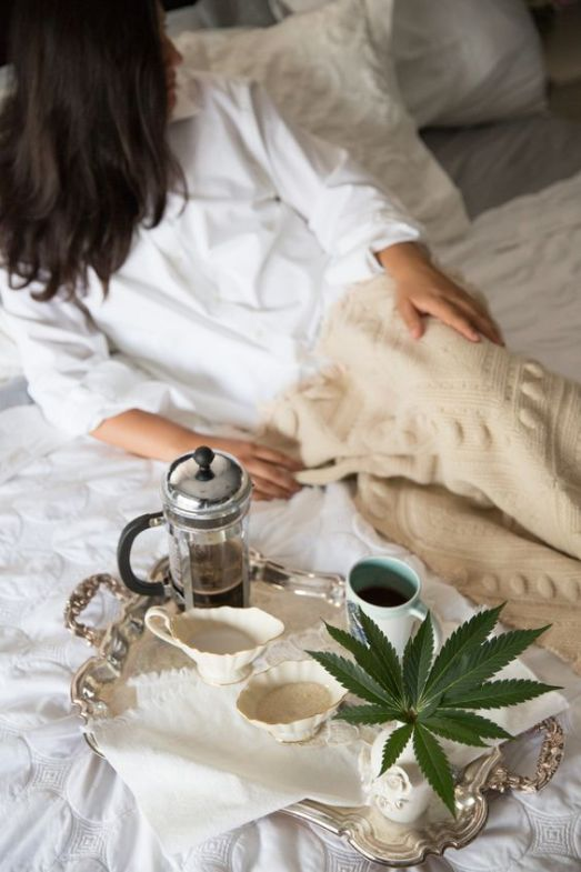 All The Best CBD Products To Help You Chill Without The High