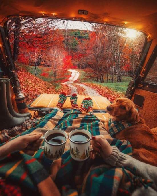 9 Cute Fall Date Ideas For Couples