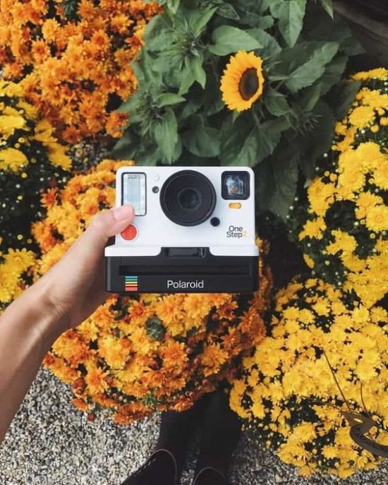 *Best Instant Film Cameras To Capture All Your Summer Memories