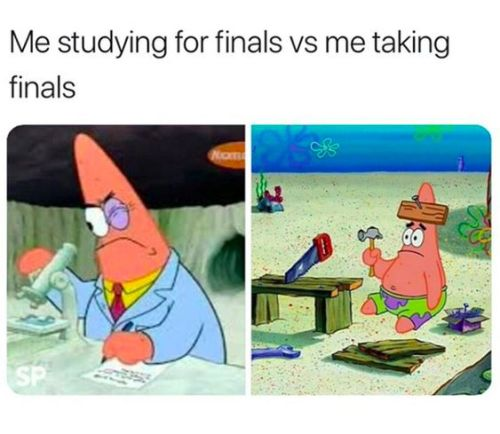 Relatable Finals Week Memes To Get You Through Your Exams