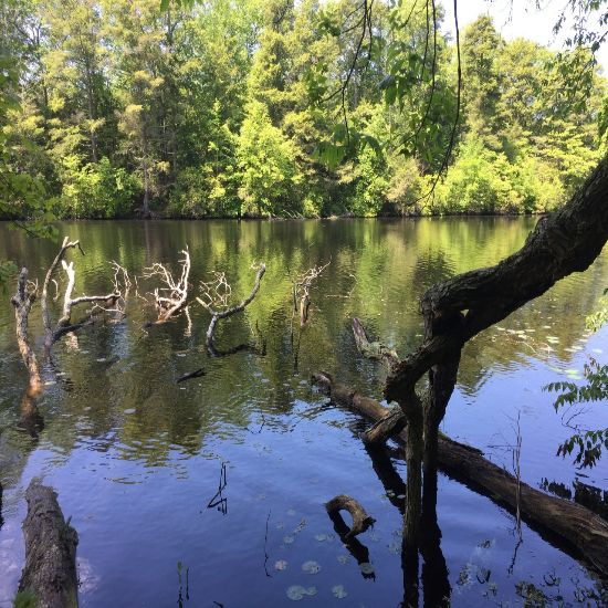 10 Secret Spots In Westbrook, CT Totally Worth Checking Out