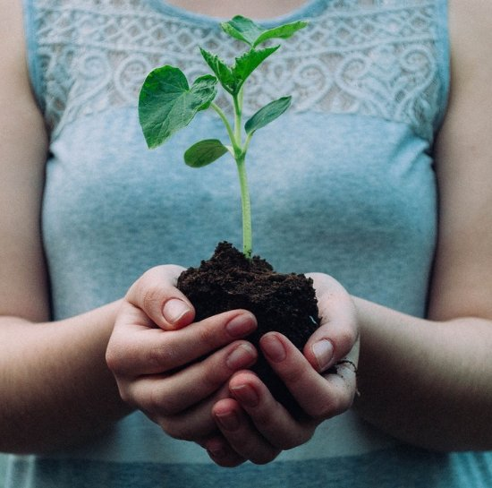 Reduce, Reuse, Recycle: How To Follow Those Rules This Earth Day