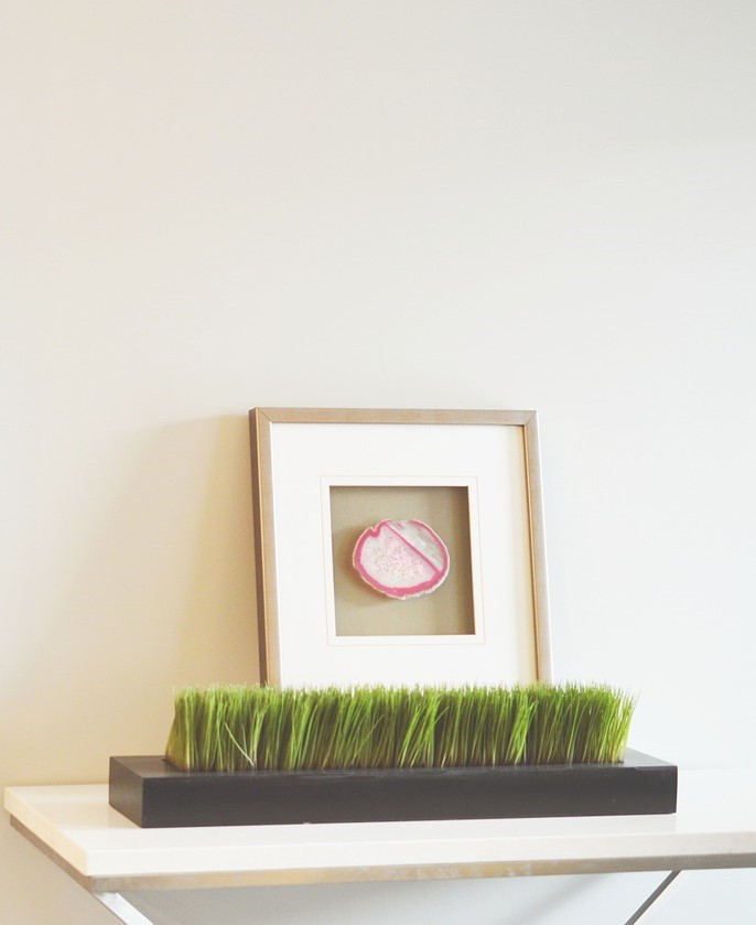 22 Cute Decor Items Under $50 You Will Love