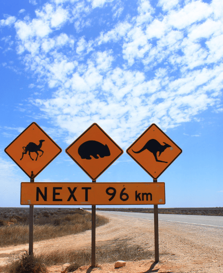 Ultimate Guide To The Best Road Trips To Take In Australia