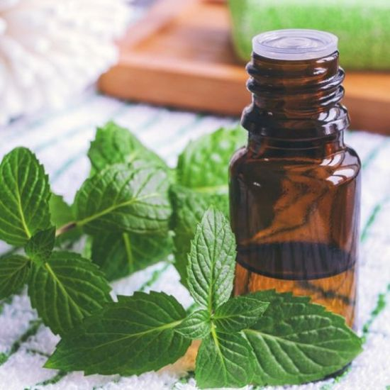 The Greatest Essential Oils For Hair Growth You Must Try