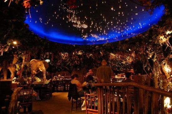 Why The Rainforest Cafe Is A Cute Date Idea