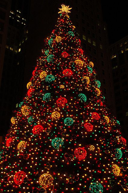 Chicago's best holiday traditions for the Holiday Spirit