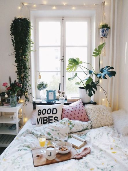 Plants are an amazing Uni room decoration idea!