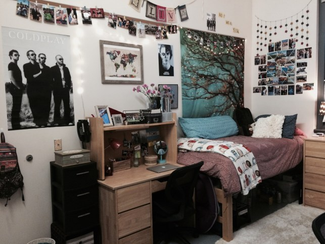 Temple University has some amazingly decorated dorm rooms!
