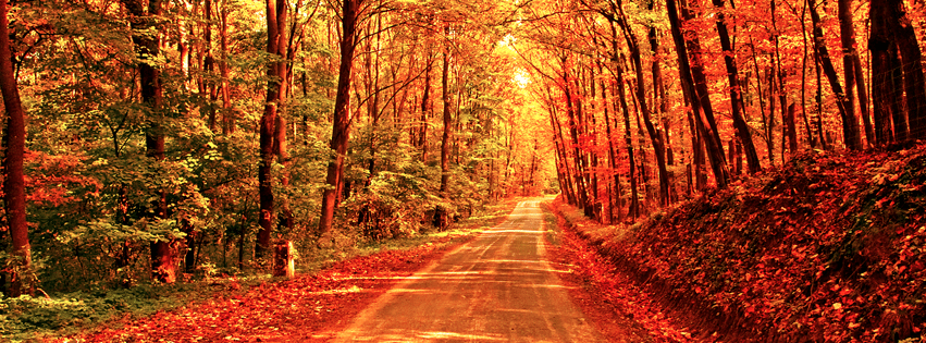 fall-autumn-road-facebook-timeline-cover