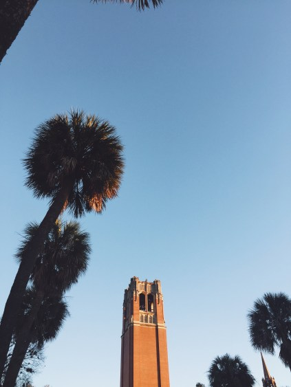 15 places for Instagram worthy pictures around the UF campus!