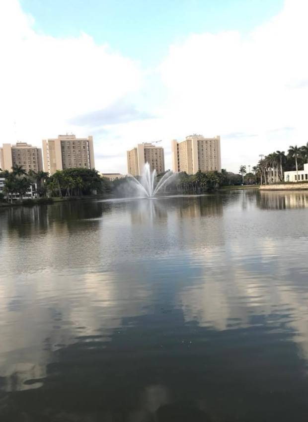 15 Pictures That Make You Wish You Went To UMiami