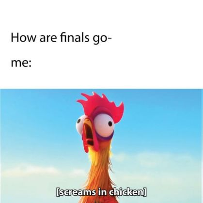 How To Survive College Finals Week