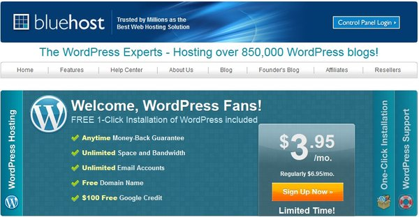 Wordpress Hosting on Bluehost