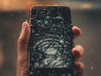What To Do when You Mistakenly Drop Your Phone in Water – DIY Steps