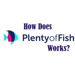 How Does Plenty of Fish Works? Details about the Dating App