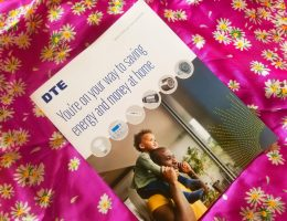 DTE Home Energy Consultation review