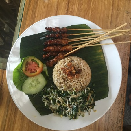 Chicken Satay with rice