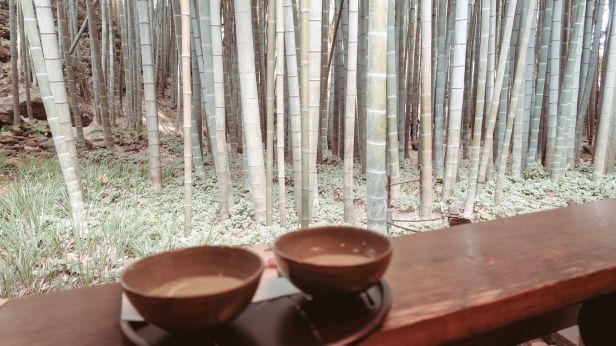 Kamakura Bamboo Forest Hokokujin
