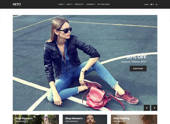 Neto WordPress Themes Template