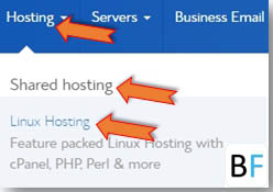 Select Bluehost Linux shared Hosting