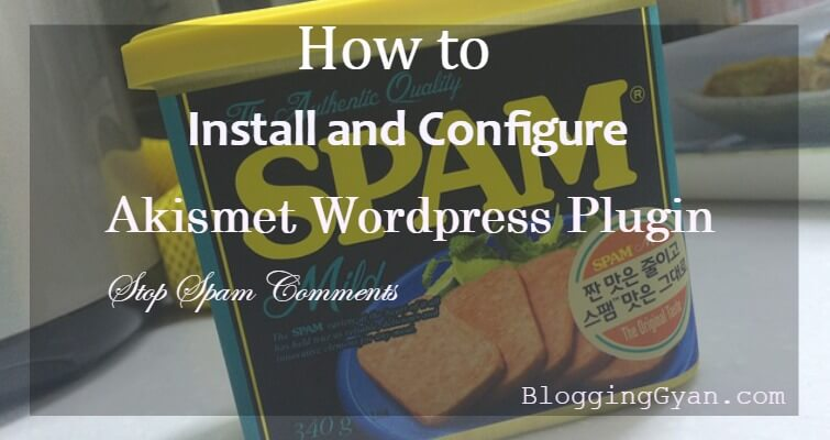 Akismet Wordpress Plugin Configure kaise Kare