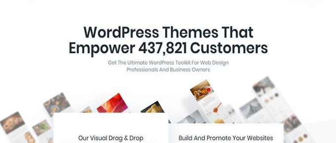 Cheapest WordPress Premium Themes Elegant