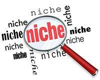 niche - start a blog