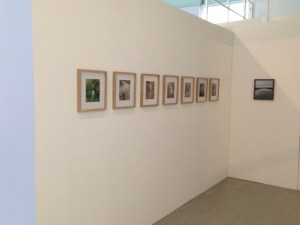 """Installation of the """"Virginia"""" series in the Mythopoesis exhibit"""