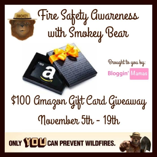 Fire Safety Awareness with Smokey Bear- $100 Amazon GC Giveaway- Ends 11-19-15. US 18+.