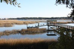 Hilton Head Marshes