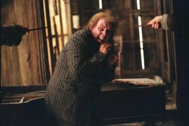 Timothy Spall firma para la 6º y 7º película de Harry Potter